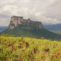 Viaje al Tepui Autana. Amazonas, Venezuela