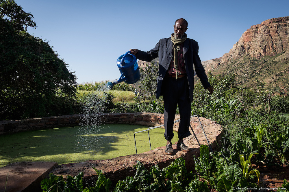 Beles Sunrise project BSP, water harvesting & irrigation. Araya Hadish (63) waters his vegetable fields at the pond.