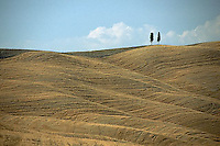 August 1997, Tuscany, Italy --- Cypress Trees on Rolling Hills --- Image by © Owen Franken/CORBIS