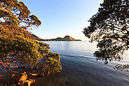 bream head, whangarei heads