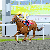 Kempton 24th April