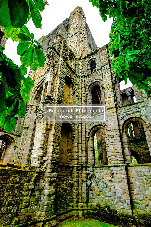 Kelso Abbey, Scottish Borders<br /> <br /> (c) Andrew Wilson | Edinburgh Elite media