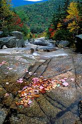 Fall foliage  in New Hampshire's White Mountains. Appalachian Trail. Waterfalls.  Zealand Falls, NH