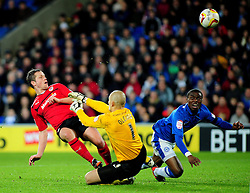 Cardiff City's Heidar Helguson's shot goes wide - Photo mandatory by-line: Dougie Allward/JMP  - Tel: Mobile:07966 386802 15/12/2012 - SPORT - FOOTBALL -  Championship -  Cardiff-  New Cardiff City Stadium  -  Cardiff City v Peterborough United