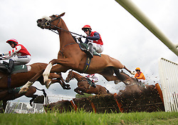 Druids Lodge ridden by Wayne Hutchinson during the 2.00 The bet365 Maiden Hurdle Race - Mandatory by-line: Jack Phillips/JMP - 26/06/2016 - HORSE RACING - Uttoxeter Racecourse - Uttoxeter, England - John Smith's Summer Cup