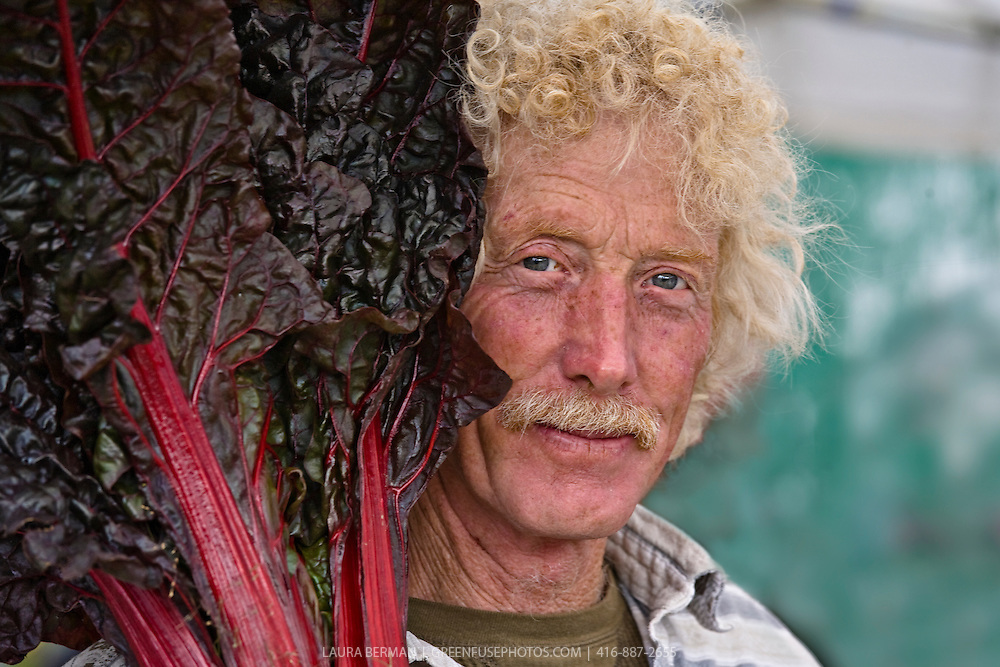 Organic farmer, Ted Thorpe, holds a bunch of dark red Ruby chard close to his face. He is looking directly at the camera with a twinkle in his bright blue eyes; his curly, blond hair is juxtaposed against the dark red curly leaves of the chard. .