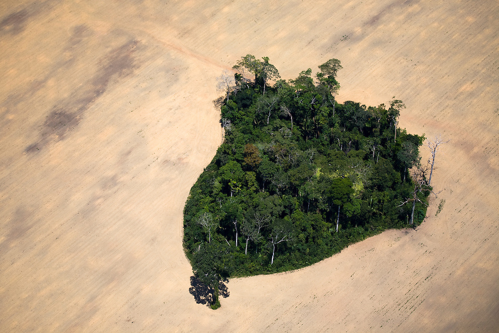 Para State, Brazil. August 27th 2007. Flight from Itaituba to Alta Floresta (Brazilian Amazon). An island of rainforest has been spared in the middle of a soy field.