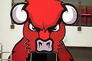 1.10.2014, Loimaan liikuntahalli, Loimaa.<br /> Korisliiga 2014-15, Nilan Bisons, Loimaa - Kouvot.<br /> Loimaan Biisoni