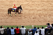 A thoroughbred racehorse and mounted jockey pass stands filled with spectators evaluating tha race participants in Korat, (Nakon Ratchasima) Thailand.