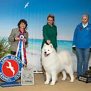Long Beach Kennel Club 01/12/2020