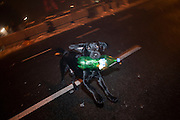New Year's Eve (December 31) in Belgrade, Serbia. Parliament square and Pionirski Park. A dog plays with the trash left over from the celebration.