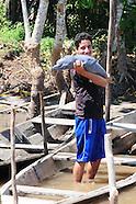Amazon Pink Dolphin Rescue in Peru