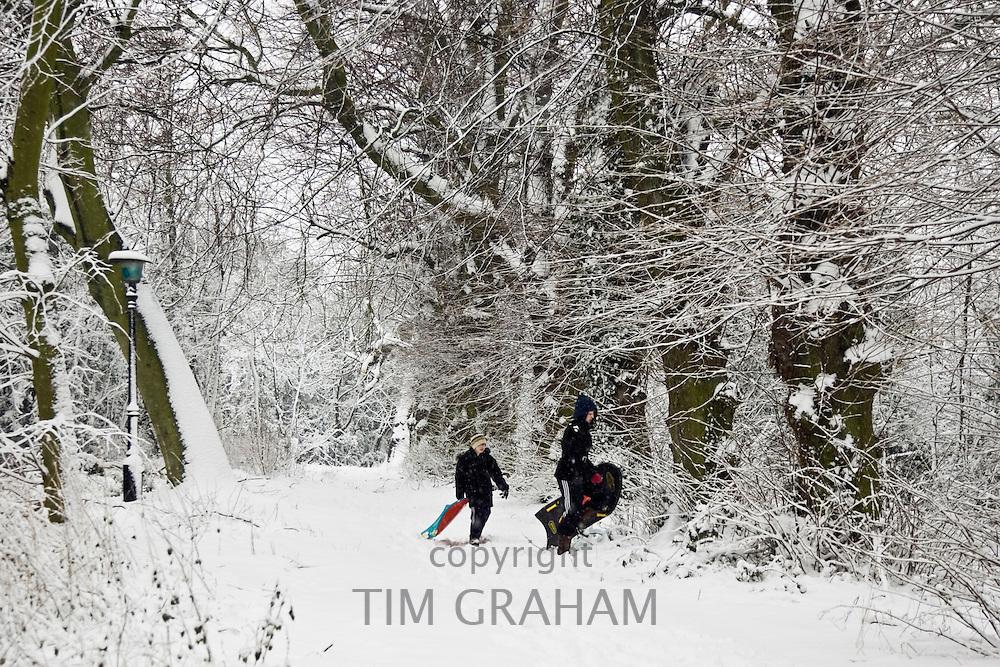Boys carry sledges across snow-covered Hampstead Heath, North London, United Kingdom
