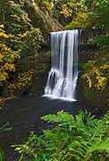Lower South Falls in Silver Falls State Park