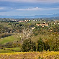 Tuscany Italy Stock Photography