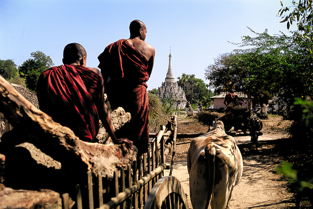 — Monks collecting firewood and transporting it to their living quarters.