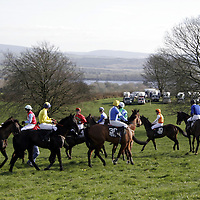 Runners and riders get ready for the start of the second race at the Killaloe point to point last Saturday.<br />
