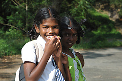 Sri Lanka, Maskeliya, 2006. Schoolgirls smile shyly at a roadside curve in the high hills near Maskeliya. Tea estates abound in this ideal climate.