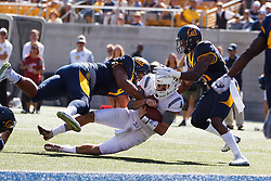 BERKELEY, CA - OCTOBER 03:  quarterback Luke Falk #4 of the Washington State Cougars is tackled short of the goal line by safety Derron Brown #4 of the California Golden Bears and safety Stefan McClure #21 during the second quarter at California Memorial Stadium on October 3, 2015 in Berkeley, California. (Photo by Jason O. Watson/Getty Images) *** Local Caption *** Luke Falk; Derron Brown; Stefan McClure