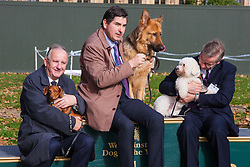 London, October 23rd 2014. Organised by the Dogs Trust and the Kennel Club, politicians  and their pooches gather outside Parliament for the 22nd Westminster Dog of the Year competition, aimed at raising awareness of dog welfare in the UK where the Dogs Trust cares for over 16,000 stray and abandoned dogs annually. PICTURED: On the podium, in third place, Sausage, owned by Laurence Robertson MP (Tewkesbury), Winner Diesel, owned by Rob Flello MP (Stoke -on-Trent South) and in second place Chief Whip Michael Gove's Bichon Snowy.