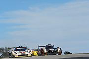 August 5-7, 2016 - Road America: #5 Christian Fittipaldi, João Barbosa, Action Express Racing, Daytona Prototype, #60 John Pew, Oswaldo Negri Jr., Michael Shank Racing, Prototype