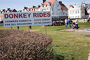 Donkey rides reappear after a gap of fifty years at Felixstowe, Suffolk