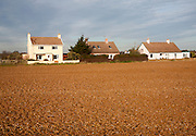 Houses in he coastal hamlet of Shingle Street seen from the beach, Suffolk, England