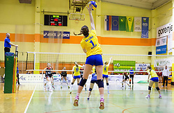 Marina Baric of Luka Koper during volleyball match between Nova KBM Branik Maribor and OK Luka Koper in Final of Women Slovenian Cup 2014/15, on January 18, 2015 in Sempeter v Savinjski dolini, Slovenia. Photo by Vid Ponikvar / Sportida