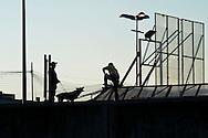 """Roma 7 Settembre 2014<br /> Protesta al Cie di Ponte Galeria contro i lunghi tempi di permanenza nella struttura del centro di identificazione ed espulsione. Gli   immigrati """"ospiti"""" del centro di identificazione ed espulsione sono saliti sul tetto della struttura e gridano: """"Liberi, liberi"""".  Un immigrato viene bloccato da un cane poliziotto<br /> Rome September 7, 2014 <br /> Protest the Center for Identification and Expulsion (CIE) for immigrants from Ponte Galeria in Rome, against the long residence time in the structure of the center for identification and expulsion. Immigrants 'guests' of the center for identification and expulsion climbed on the roof of the structure and cry: """"Free, free.""""  An immigrant is blocked by a police dog"""