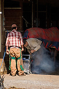 A visit from the farrier provides new springtime shoes for the horses at Transitions Farm in Elmer, Salem County NJ.