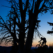 Andrew Whiteford rides the ridge of Black's Canyon just after sunset on Teton Pass.