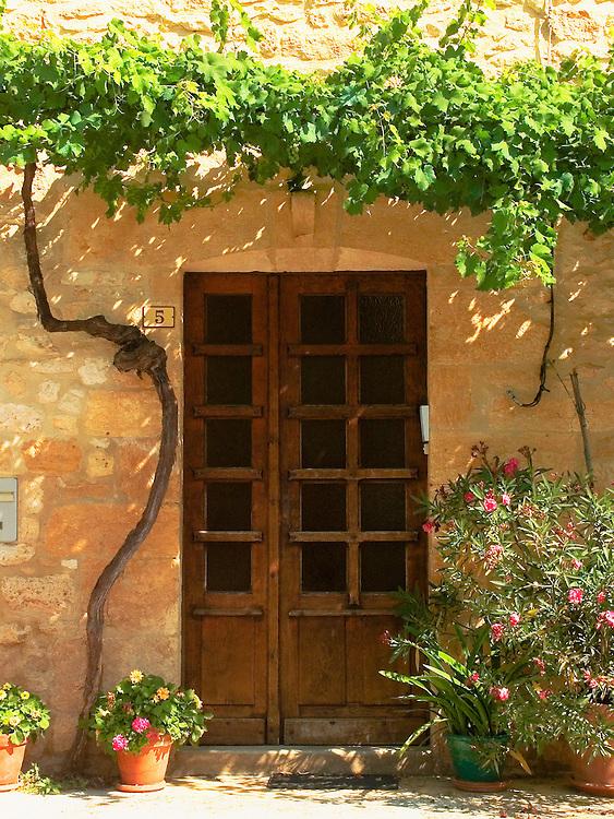 Treille au dessus de la porte..Treillised vineyard with the top of the door.