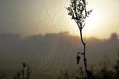 2007 Fall Early Morning