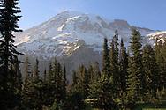 Trailside view of Mount Rainier - Paradise -Mount Rainier National Park, WA