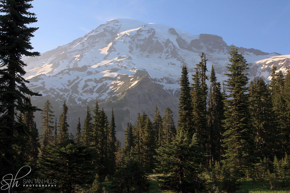 Trailside view of Mount Rainier - Paradise -Mount Rainier National Park, WA