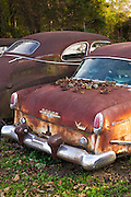 Dodge V Eight Coronet auto with abandoned rusty old American automobiles, MIssissippi, USA