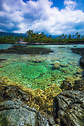 Coral reef and heiau, Pu'uhonua O Honaunau National Historic Park (City of Refuge), Kona Coast, Hawaii USA