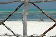 A man cycles his bicycle along the beach..Jambiani Beach, East Coast, Zanzibar, Africa.© Demelza Cloke