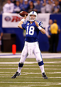 Indianapolis Colts quarterback Peyton Manning (7) throws a pass during the NFL week 8 football game against the Houston Texans on Monday, November 1, 2010 in Indianapolis, Indiana. The Colts won the game 30-17. ©Paul Anthony Spinelli