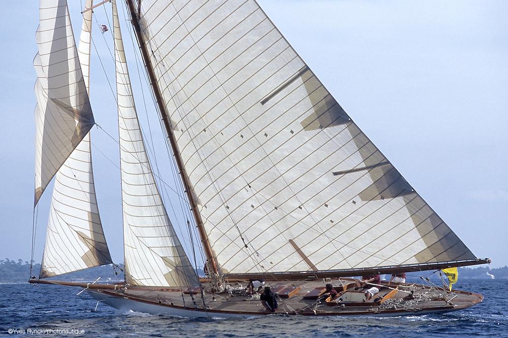 Cintra, voile classique, voile, voilier tradition