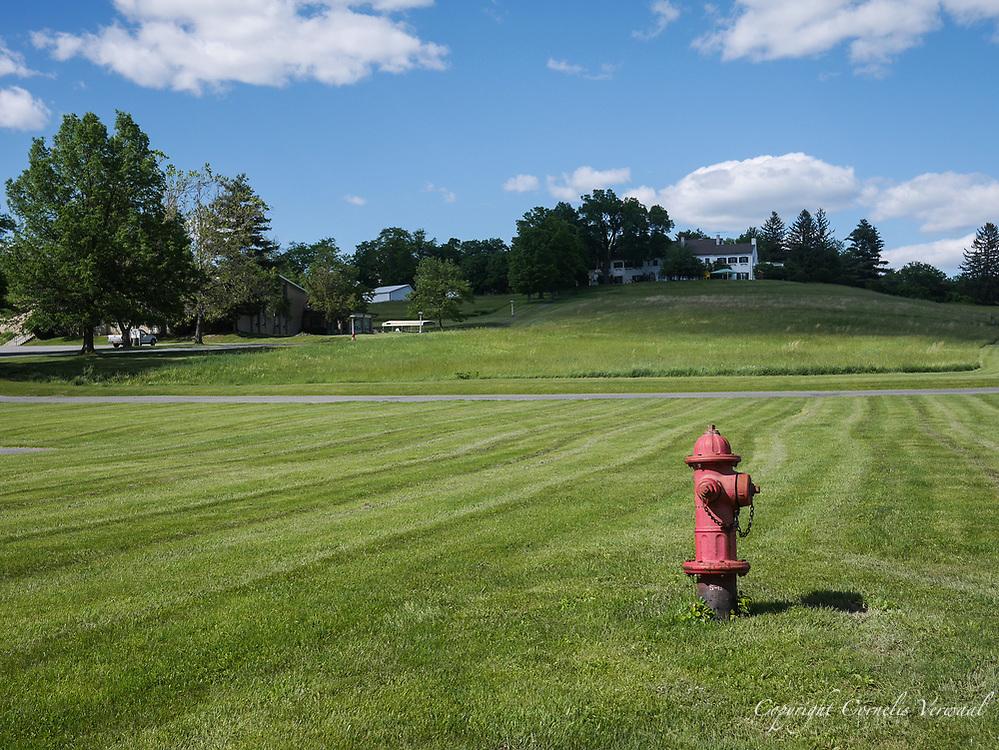 Harmony Farm, Goshen, NY  - lawn with fire hydrant