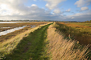 Winter landscape of the flood defence wall footpath of the River Deben, Ramsholt, Suffolk, England
