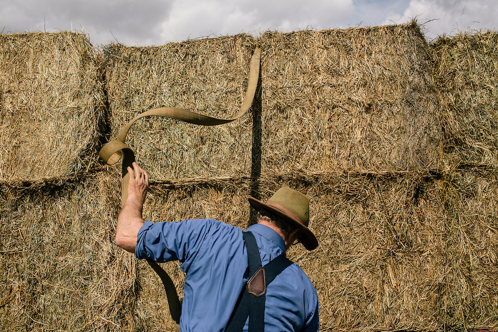 SWOOPE, VA - MARCH 26 Pasture-based farmer Joel Salatin readies hay to be put down for cows at Polyface Farms in Swoope, Va. on March 26, 2015. Salatin is one of the heroes of the sustainable-food movement, and he appeals to both left- and right-wing audiences.  (Photo by Greg Kahn/GRAIN for The Washington Post)