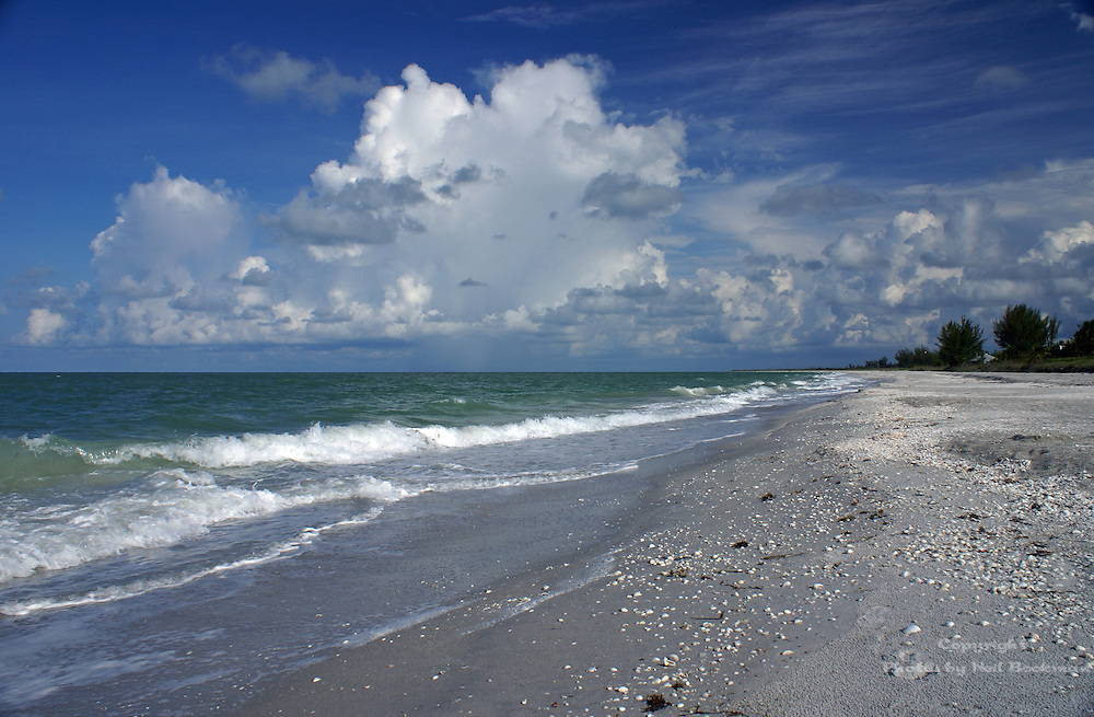 The beach on the Gulf Coast of Sanibel, FL.