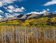 East Beckwith Mountain and Autumn Aspens, Gunnison National Forest, Colorado