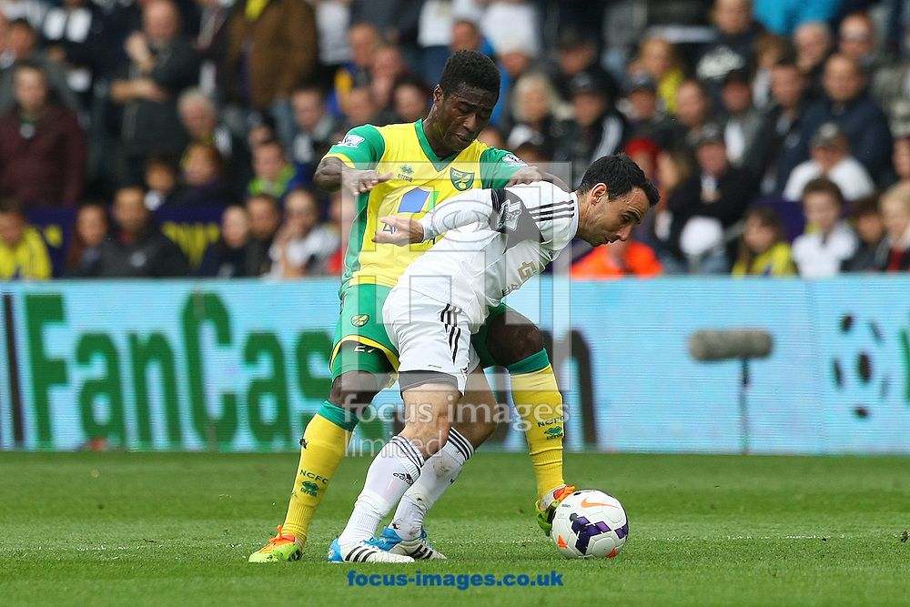 Alexander Tettey of Norwich and Leon Britton of Swansea in action during the Barclays Premier League match at the Liberty Stadium, Swansea<br /> Picture by Paul Chesterton/Focus Images Ltd +44 7904 640267<br /> 29/03/2014