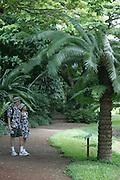 McBryde Garden, National Tropical Botanical Gardens, Kauai, Hawaii<br />