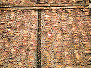 24 MARCH 2015 - MAHACHAI, SAMUT SAKHON, THAILAND: Squid dry on the sun on racks in Samut Sakhon (also called Mahachai), Thailand.     PHOTO BY JACK KURTZ