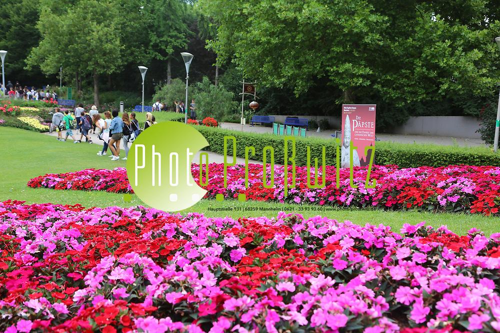 Mannheim. 27.06.17   Bl&uuml;hende &quot;Papstgeschichten&quot;.<br /> Luisenpark. Bl&uuml;hende &quot;Papstgeschichten&quot;.<br /> Am Fahnenh&uuml;gel am Luisenpark-Haupteingang, wo eine sehr blumige &Uuml;bersetzung der p&auml;pstlichen Versammlung auf Sie wartet: Unsere G&auml;rtner haben sich bei der Beetplanung von den kardinalen, bisch&ouml;flichen und p&auml;pstlichen Farben Rot, Magenta und Wei&szlig; inspirieren lassen!<br /> Eine florale Erg&auml;nzung zur Ausstellung &bdquo;Die P&auml;pste und die Einheit der lateinischen Welt&ldquo;, die derzeit in den Reiss-Engelhorn-Museen gezeigt wird.<br /> <br /> BILD- ID 0490  <br /> Bild: Markus Prosswitz 27JUN17 / masterpress (Bild ist honorarpflichtig - No Model Release!)