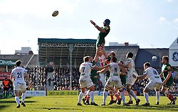 Graham Kitchener (Leicester) rises high to win lineout ball - Photo mandatory by-line: Patrick Khachfe/JMP - Tel: Mobile: 07966 386802 23/03/2014 - SPORT - RUGBY UNION - Welford Road, Leicester - Leicester Tigers v Exeter Chiefs - Aviva Premiership.